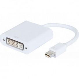 Conversor mini Display Port 1.1 a DVI-D